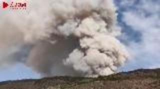 人民网连线林业部门专家解读木里县森林火灾原因