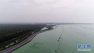 (防汛抗洪)(1)巢湖水位升至设防的百年一遇标准