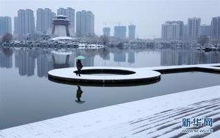 #(环境)(4)瑞雪迎春