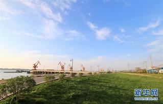 """(大江奔流——来自长江经济带的报道·图文互动)(3)为了""""一岸翠绿""""——江西九江生态修复百里长江"""