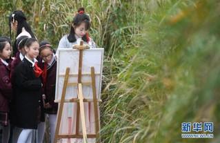 (美丽中国)(4)西溪湿地秋浓芦花白