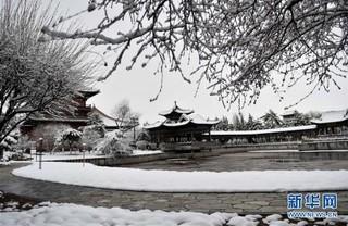 (环境)(1)古城春雪