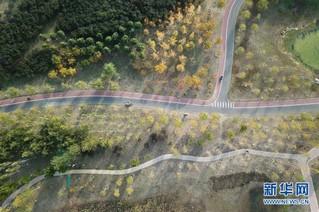 (在习近平新时代中国特色社会主义思想指引下——新时代新作为新篇章·图文互动)(2)为首都守护好绿水青山——北京更高质量保护生态涵养区调查