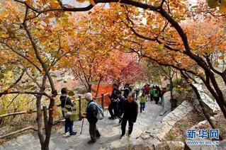 (在习近平新时代中国特色社会主义思想指引下——新时代新作为新篇章·图文互动)(7)为首都守护好绿水青山——北京更高质量保护生态涵养区调查