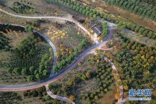 (在习近平新时代中国特色社会主义思想指引下——新时代新作为新篇章·图文互动)(1)为首都守护好绿水青山——北京更高质量保护生态涵养区调查