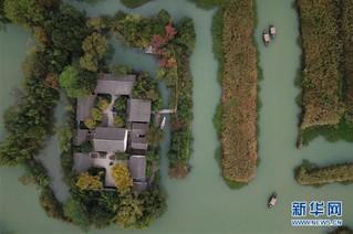 (美丽中国)(5)西溪湿地秋浓芦花白