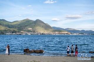 (环境)(3)云南大理洱海保护取得阶段性成效