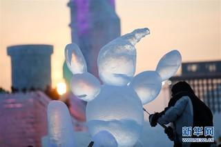 (社会)(3)哈尔滨国际冰雕比赛:初露芳容