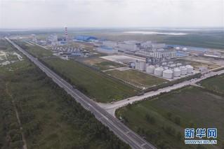 (经济)(5)黑龙江大庆:玉米深加工助力农民增收