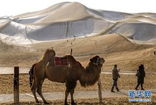 """(社会)(2)沙漠""""披纱""""引客来"""