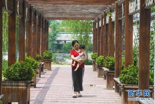 (社会)(2)河北故城:美丽乡村美如画