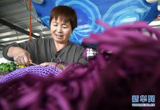 (经济)(6)山东惠民:绳网产业助增收