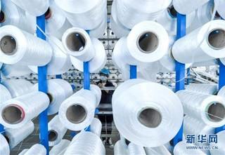 (聚焦复工复产)(3)河北鸡泽:企业复工复产赶订单