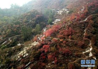(在习近平新时代中国特色社会主义思想指引下——新时代新作为新篇章·图文互动)(6)为首都守护好绿水青山——北京更高质量保护生态涵养区调查