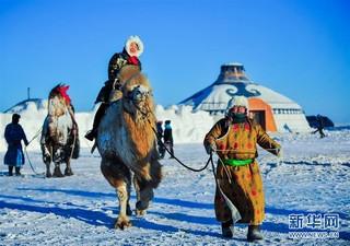 (社会)(5)冰雪草原上的骆驼文化节