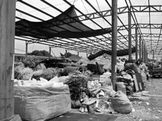 有人占农用地建6000平米废品回收站 称干一天算一天