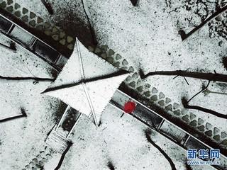 #(环境)(1)瑞雪迎春