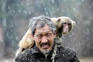 猴子为什么跟人�y.b9`�_耍猴人鲍凤山,一旁的就是那只村子里唯一还能穿戏服戴面具表演的猴子.