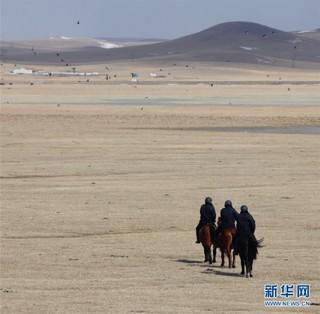 (环境)(3)内蒙古:巡护踏查  保护候鸟