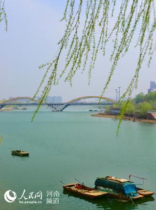 近日,河南省漯河沙澧河风景区杨柳依依,绿波轻漾,浓郁的春色吸引了不