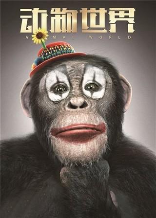 开机海报中,一只猩猩的影子引人遐想.图片
