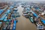 7月22日下午,在江苏省启东市吕四港,大批渔船回港避风(无人机拍摄)。