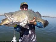 垂钓者钓鱼奇遇:鱼嘴里还叼着另一条鱼