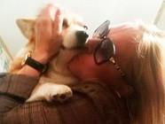 单亲妈妈被害 宠物犬助警方破案