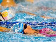 """二青会游泳比赛:青年运动员""""碧波逐浪"""""""