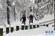 塞尔维亚雪景