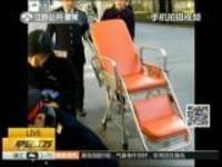 温暖回家路:乘客突发疾病  铁路南京站紧急救援