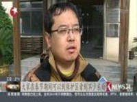 """上海:春节东滩好观鸟  """"鸟类天堂""""乐趣多"""