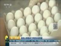 首批从美国进口鸡蛋运抵韩国