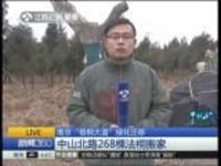 """南京""""梧桐大道""""绿化迁移:中山北路268棵法桐搬家"""