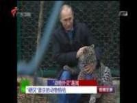 """""""动物外交""""趣闻:""""硬汉""""普京的动物情结"""