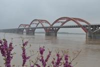 这是高水位下的长沙黑石铺大桥(3月23日摄)。