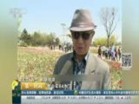 """关注""""五一""""假期·旅游:辽宁锦州——世博园开园首日客流量达到六万人"""
