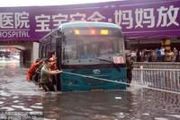 6月20日晚5点左右,消防官兵赶赴现场将乘客背出车后,合力将被困的公交车推了出来。