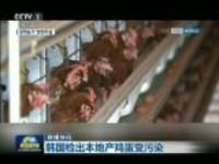 联播快讯:韩国检出本地产鸡蛋受污染