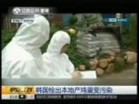 韩国检出本地产鸡蛋受污染