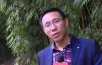 义和村的新变化:斩断污染 建成果园
