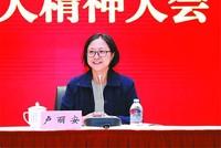 台湾代表卢丽安:为构建人类命运共同体加油努力