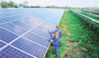 由北京七星华电科技集团在匈牙利建成和并网发电的1.8兆瓦晶硅太阳能小型光伏电站,占地3.6公顷,设计寿命25年,共安装有6666块组件,预计年发电量为198万千瓦时,每年可减少碳排放600余吨。图为工作人员在做检测。 记者 翟朝辉摄