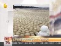 俄罗斯海岸聚集数千大小一致冰球引热议