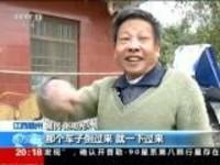 危急时刻·江西赣州:停车忘拉手刹  货车撞向民房