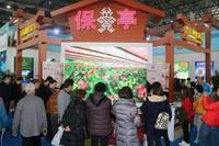 在海博会保亭展馆前,众多游客在参观。