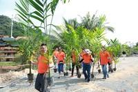景区植树活动现场
