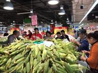 海口家乐福到东方市采购玉米销售