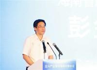 海南省副省长彭金辉在对接会上致辞