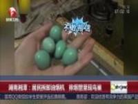 湖南湘潭:居民拆卸油烟机  排烟管里现鸟巢